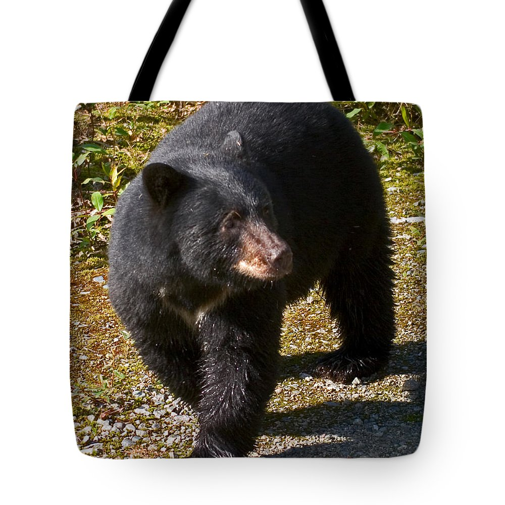 Nature Tote Bag featuring the photograph Black Bear by David Salter