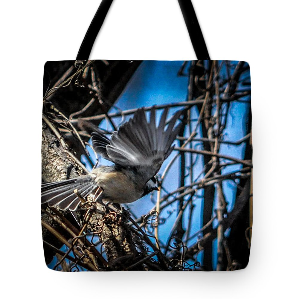 Chickadee Tote Bag featuring the photograph Black Capped Chickadee Start Of Flight by Ronald Grogan