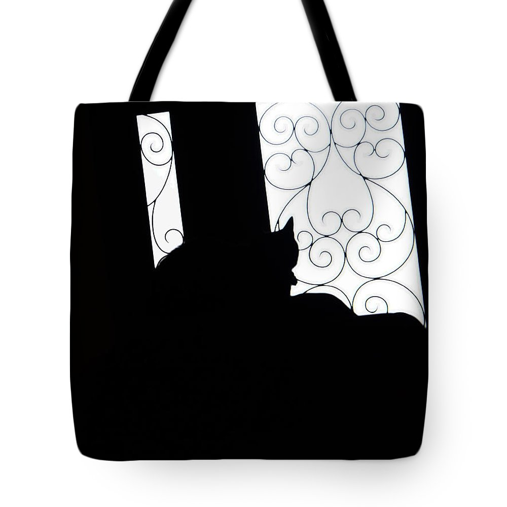 Cat Tote Bag featuring the photograph Black Cat by David Pantuso