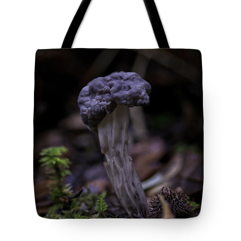 Elfin Saddle Tote Bag featuring the photograph Black Elfin Saddle by Betty Depee