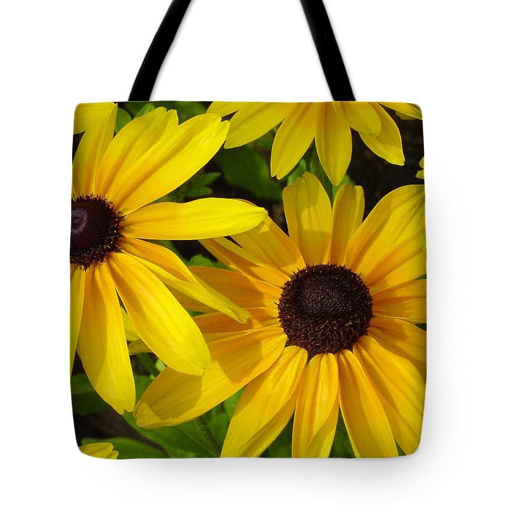 Black Eyed Susan Tote Bag featuring the photograph Black Eyed Susans by Suzanne Gaff