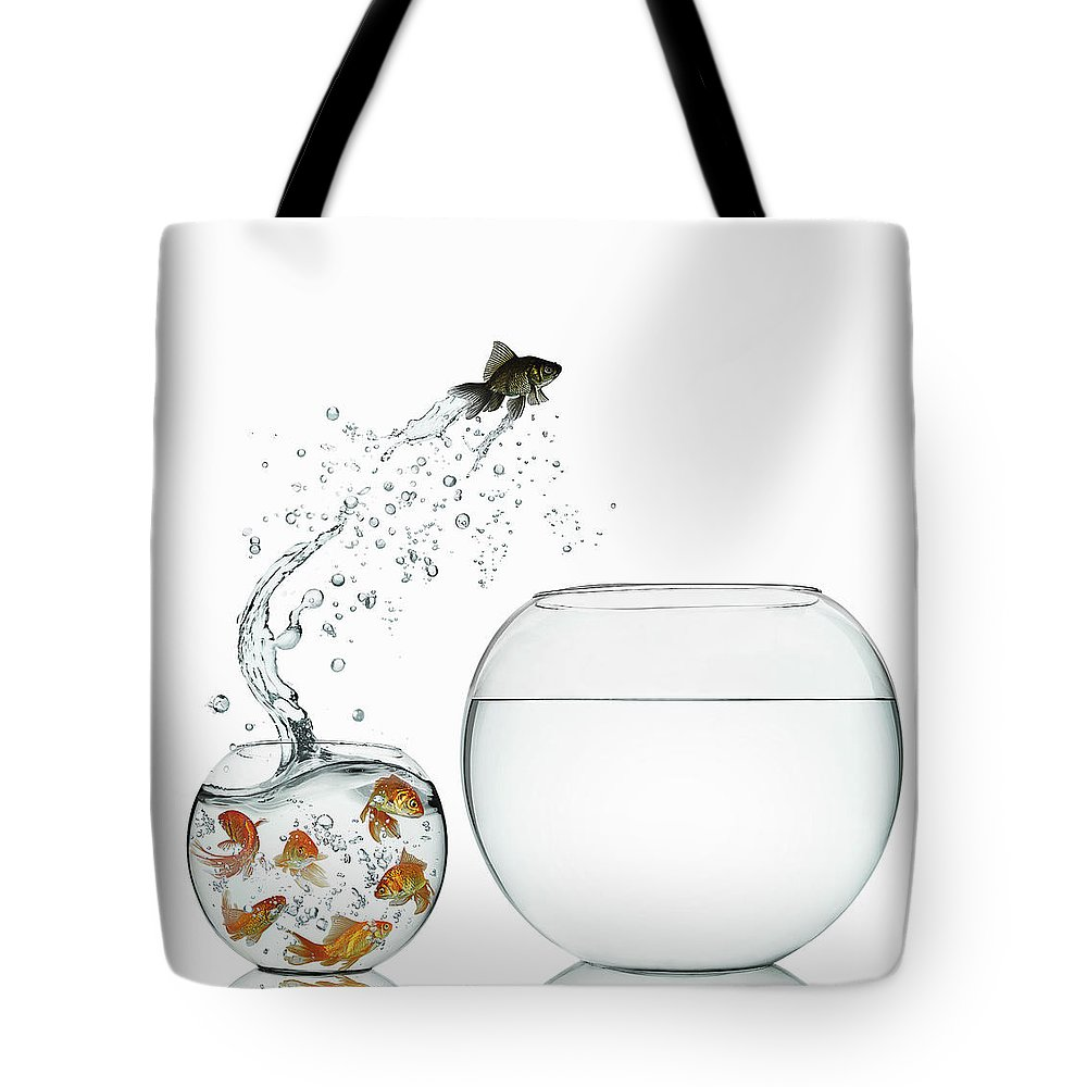 Pets Tote Bag featuring the photograph Black Goldfish by Gandee Vasan