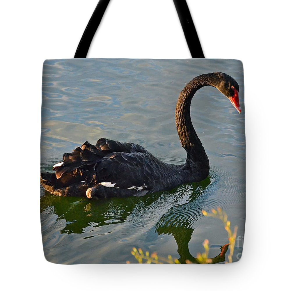 Swan Tote Bag featuring the photograph Black Swan At Sunset by Carol Bradley