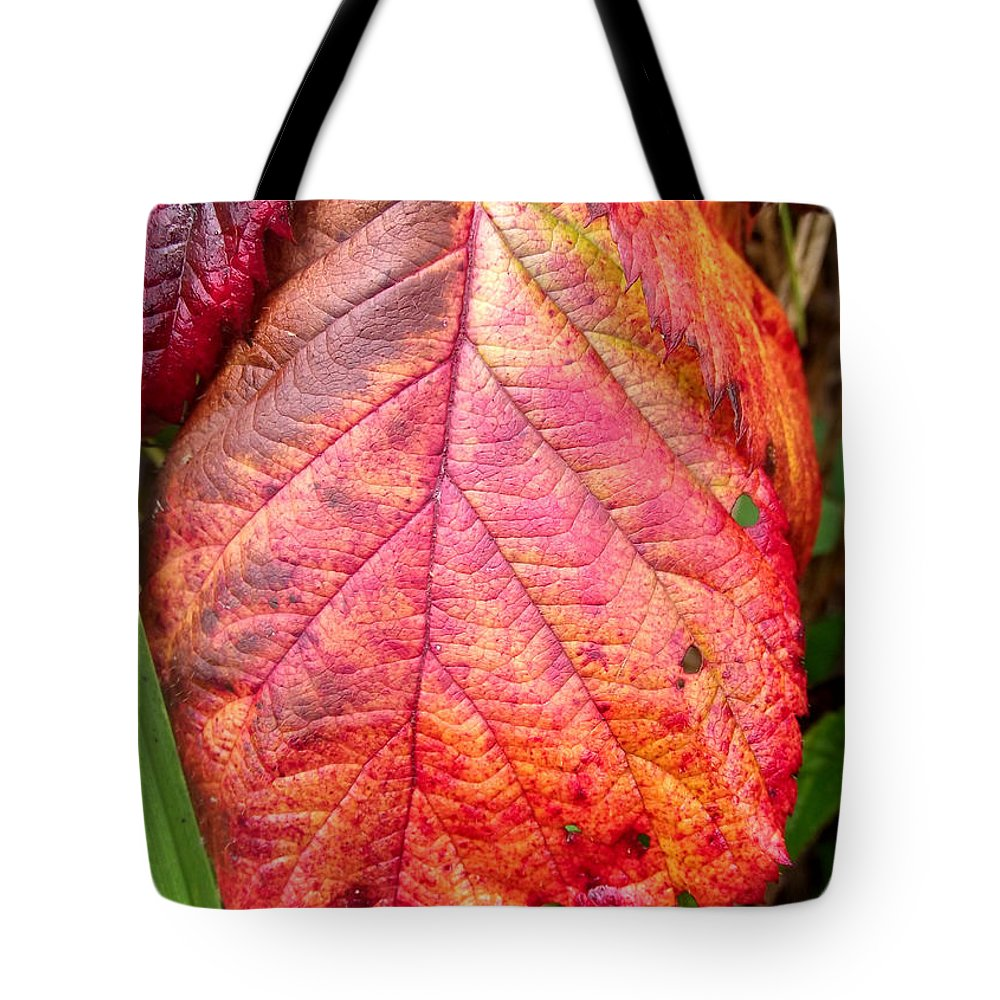 Duane Mccullough Tote Bag featuring the photograph Blackberry Leaf In The Fall 3 by Duane McCullough