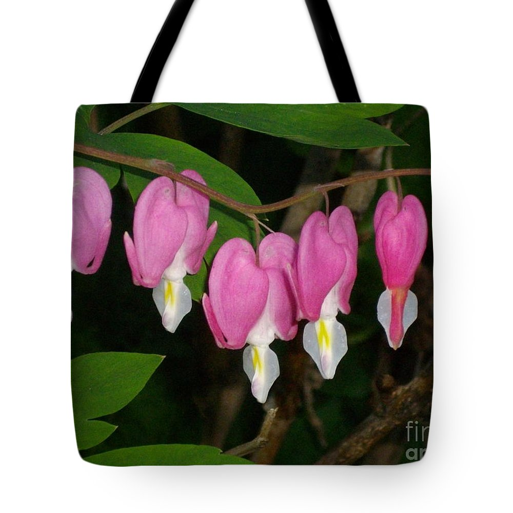 Flower Tote Bag featuring the photograph Bleeding Hearts by H Cooper