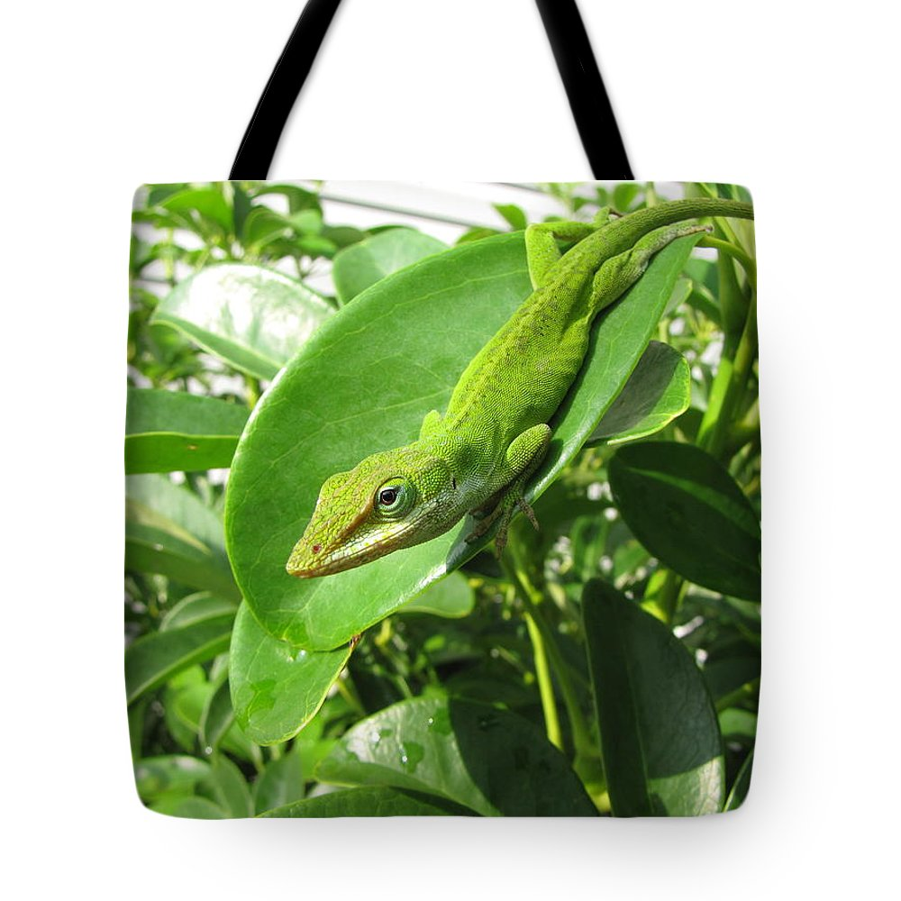 Blending Tote Bag featuring the photograph Blending In by Beth Vincent