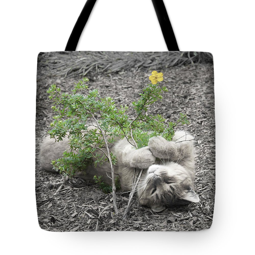 Cat Tote Bag featuring the photograph Bliss by K Hines