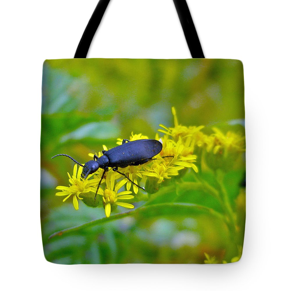 Beetle Tote Bag featuring the photograph Blister Beetle On Yellow Autumn Flowers by Mother Nature