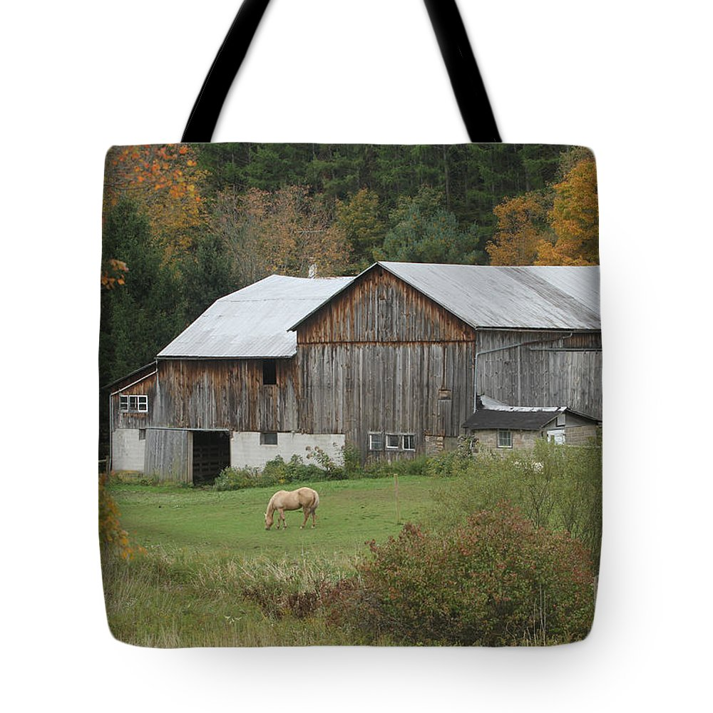 Horse Tote Bag featuring the photograph Blonde Horse by CJ McKendry