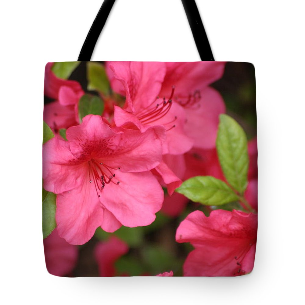 Azalea Tote Bag featuring the photograph Blooming Azalea by Living Color Photography Lorraine Lynch
