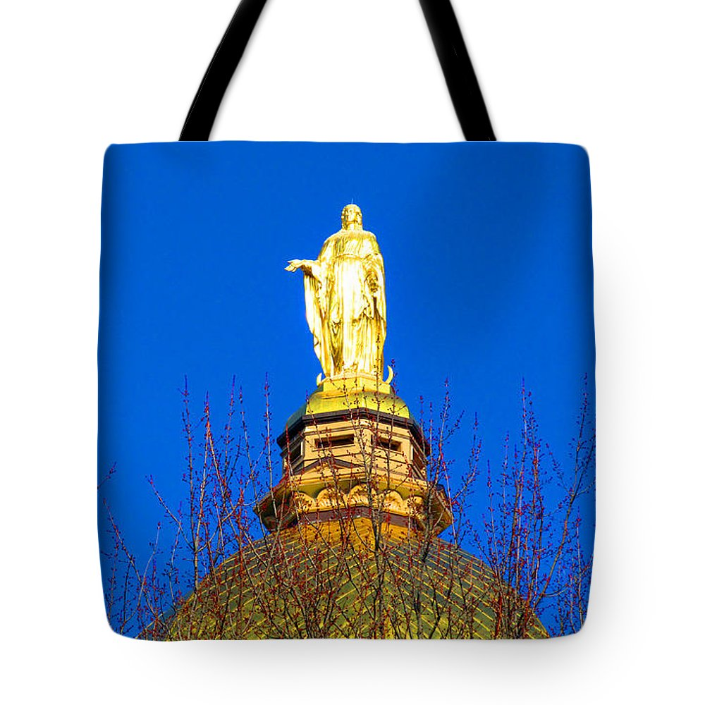 Statue Tote Bag featuring the photograph Blooming Golden Dome by Tina M Wenger