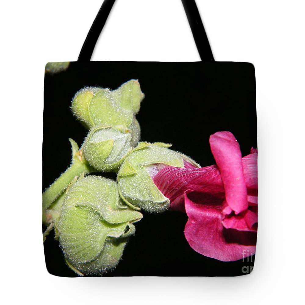 Hollyhock Tote Bag featuring the photograph Blooming Pink Hollyhock by Ann E Robson