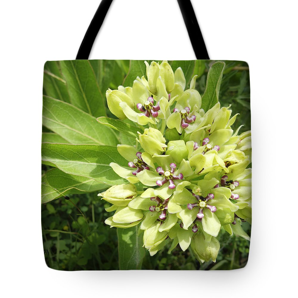 Wildflower Tote Bag featuring the photograph Blooming Wild by Ann Powell