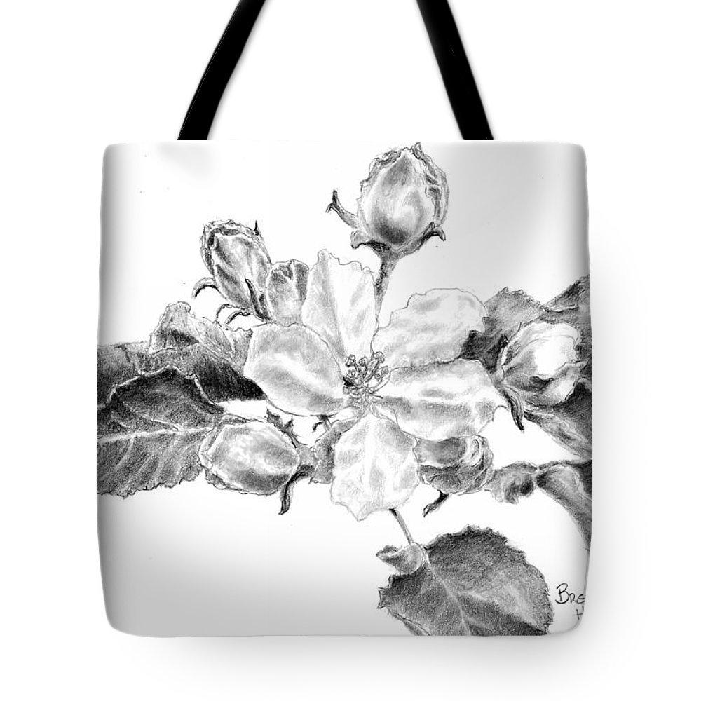 Floral Drawing Pencil Black And White Flowers Botanical Decorative Nature Blossom Illustration Wall Art Flora Apple Blossom Tote Bag featuring the drawing Blossom by Brenda Hill