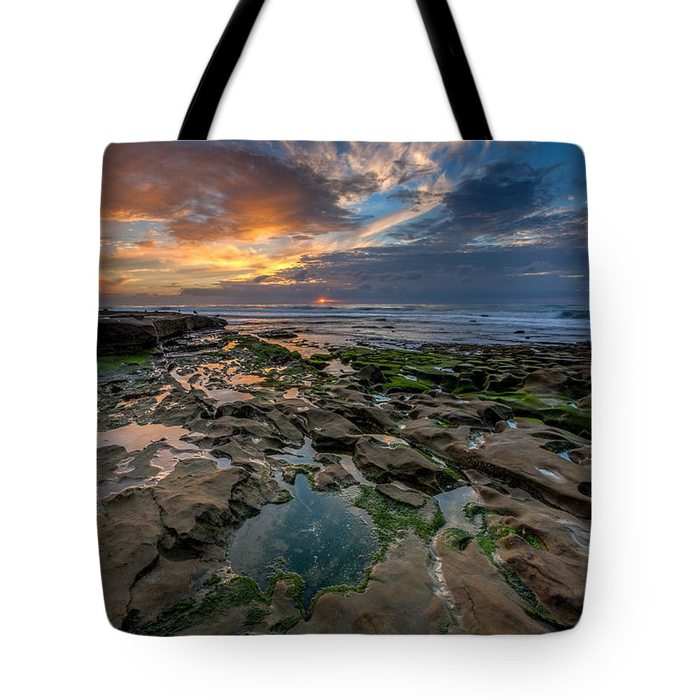 Beach Tote Bag featuring the photograph Blue And Gold Tidepools by Peter Tellone