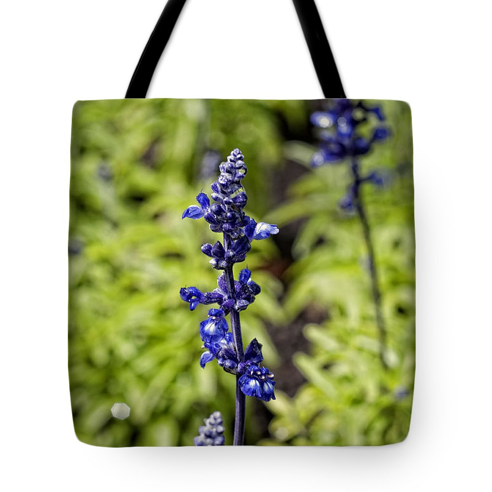 Flowers Tote Bag featuring the photograph Blue And Green by Miguel Winterpacht