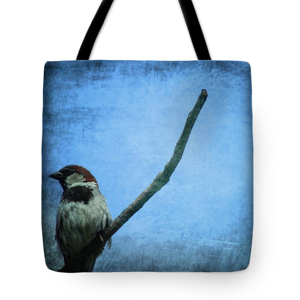 Sparrow On Blue Tote Bag featuring the photograph Sparrow On Blue by Dan Sproul