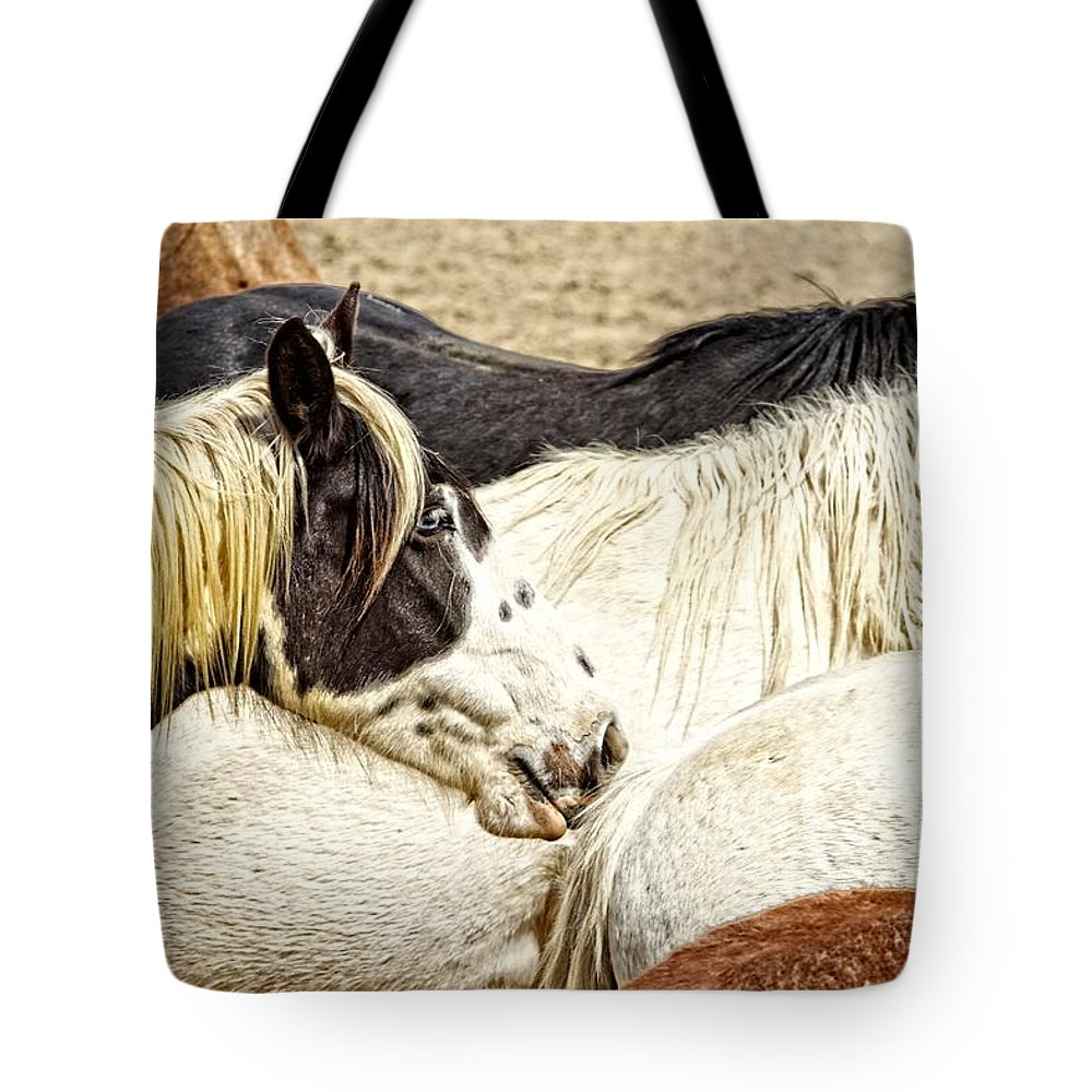 Horse Tote Bag featuring the photograph Blue Eyed Beauty by Alice Gipson
