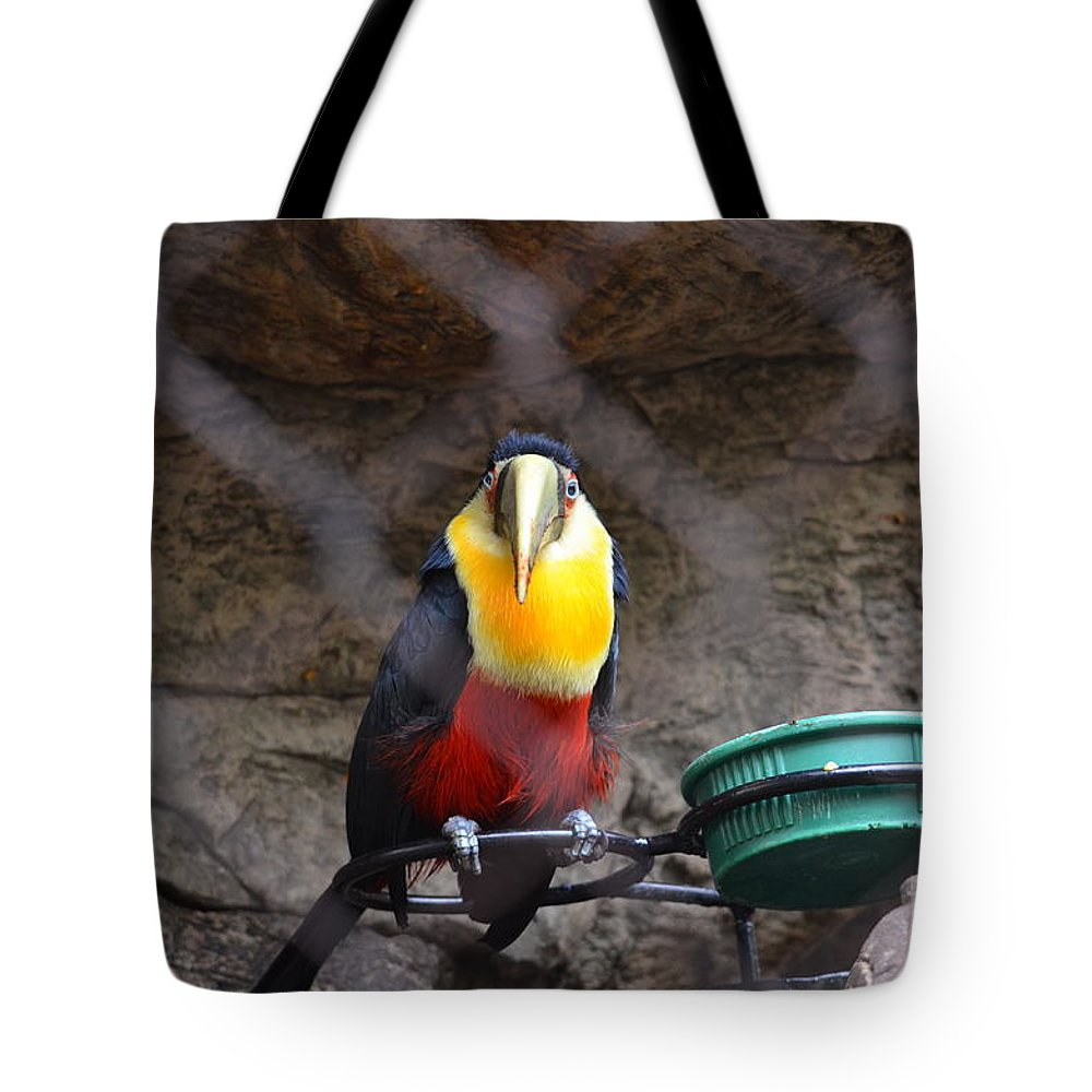 Fort Worth Tote Bag featuring the photograph Blue Eyes by Hilton Barlow