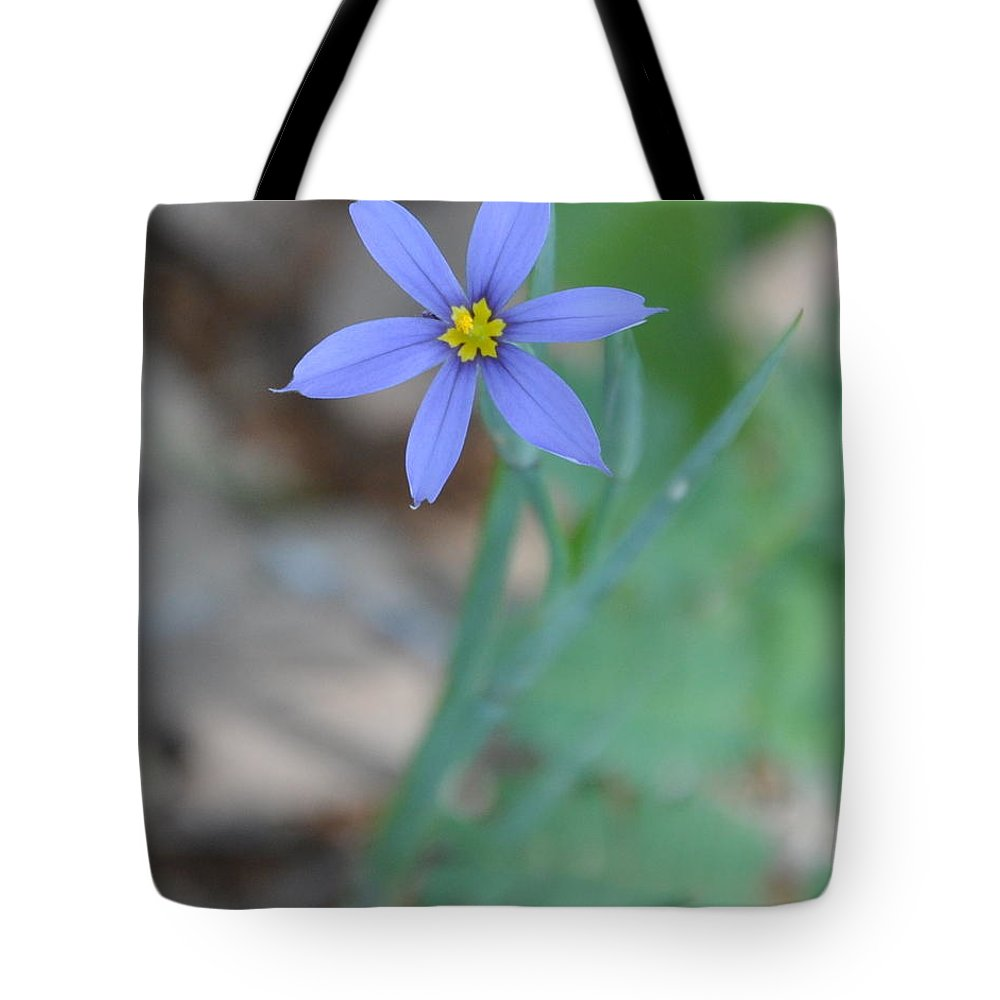 Blue Tote Bag featuring the photograph Blue Flower by Frank Madia