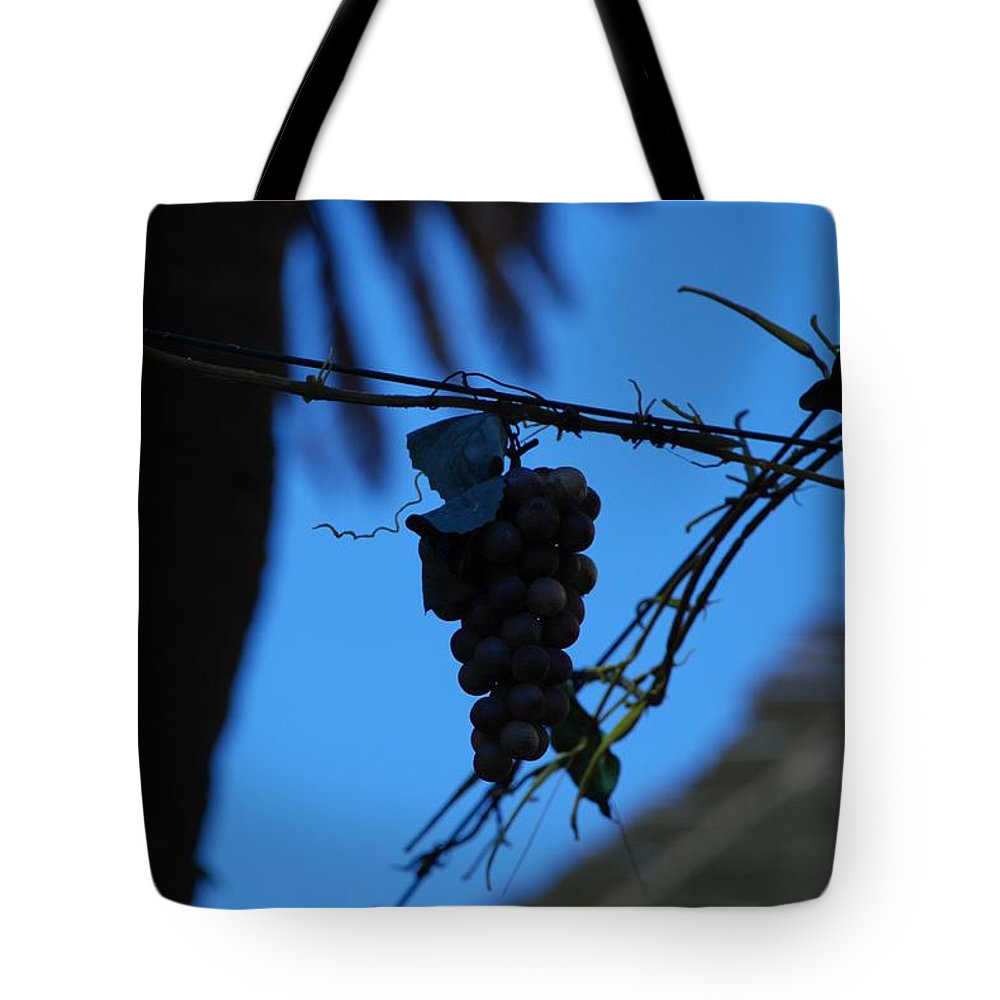 Grappes Tote Bag featuring the photograph Blue Grapes by Dany Lison
