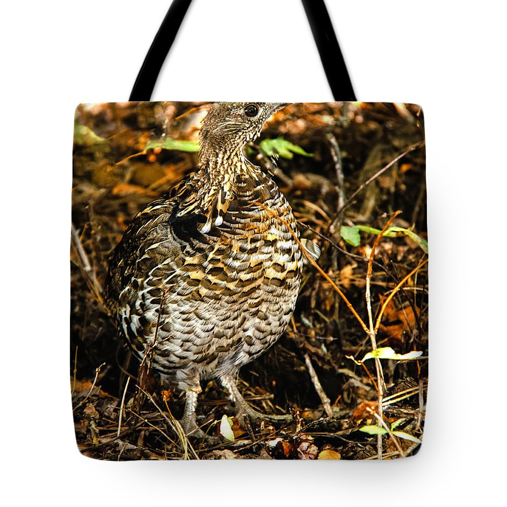Grouse Tote Bag featuring the photograph Blue Grouse by Robert Bales