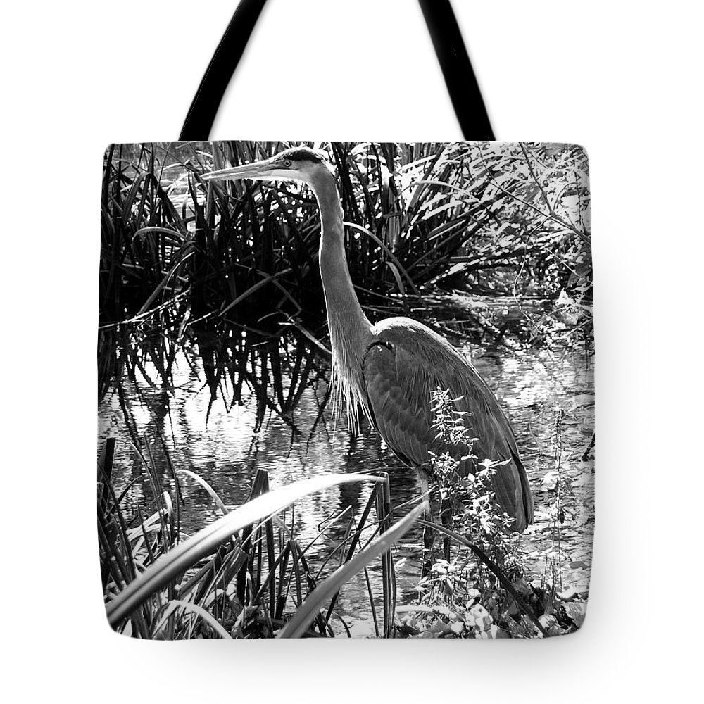 Landscape Tote Bag featuring the photograph Blue Heron 7bw by Earl Johnson