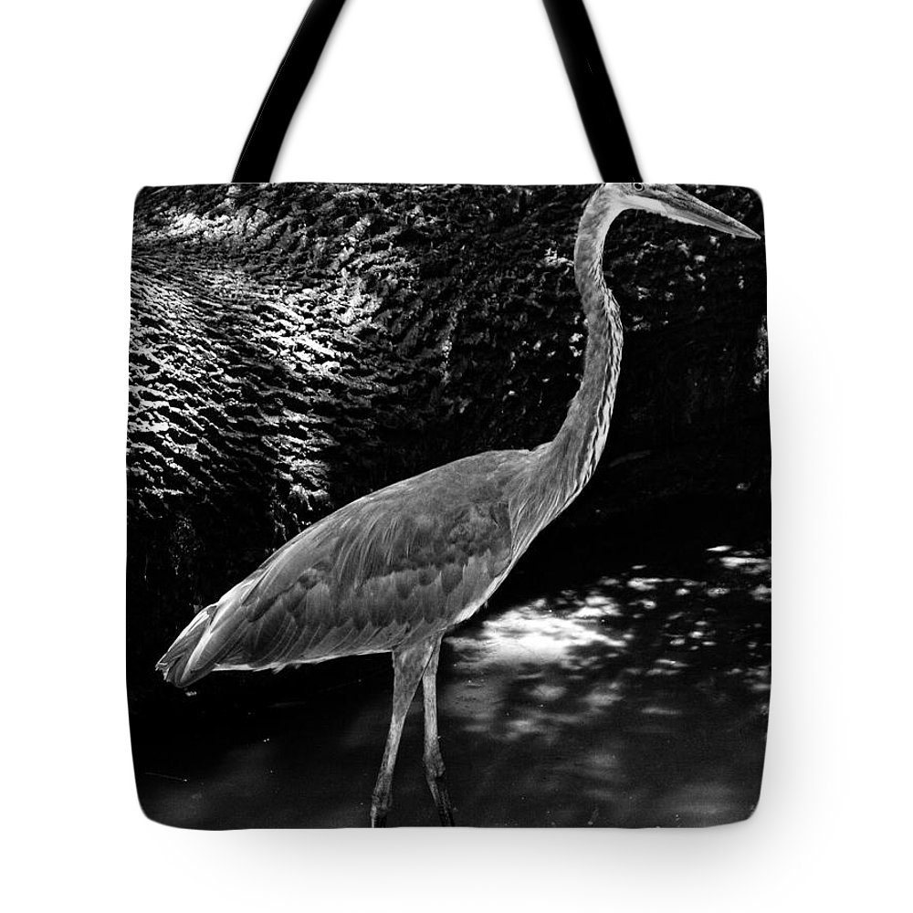 Landscape Tote Bag featuring the photograph Blue Heron 8bw by Earl Johnson