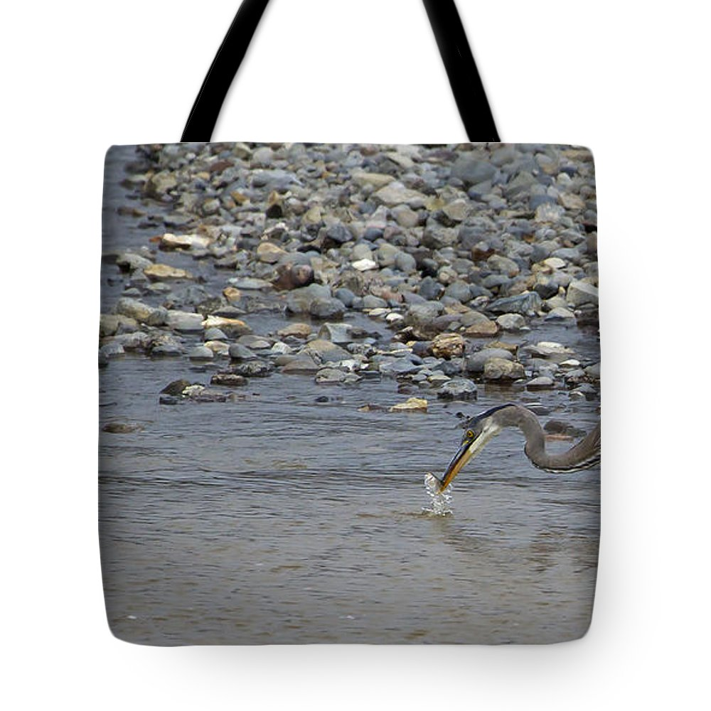 Heron Tote Bag featuring the photograph Blue Heron And Fish  #9619 by J L Woody Wooden
