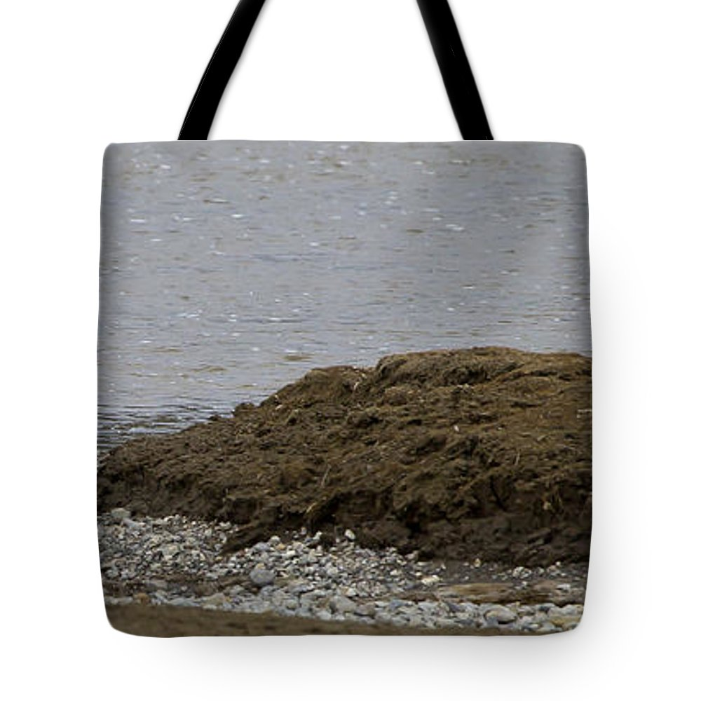 Heron Tote Bag featuring the photograph Blue Heron And Fish  #9642 by J L Woody Wooden