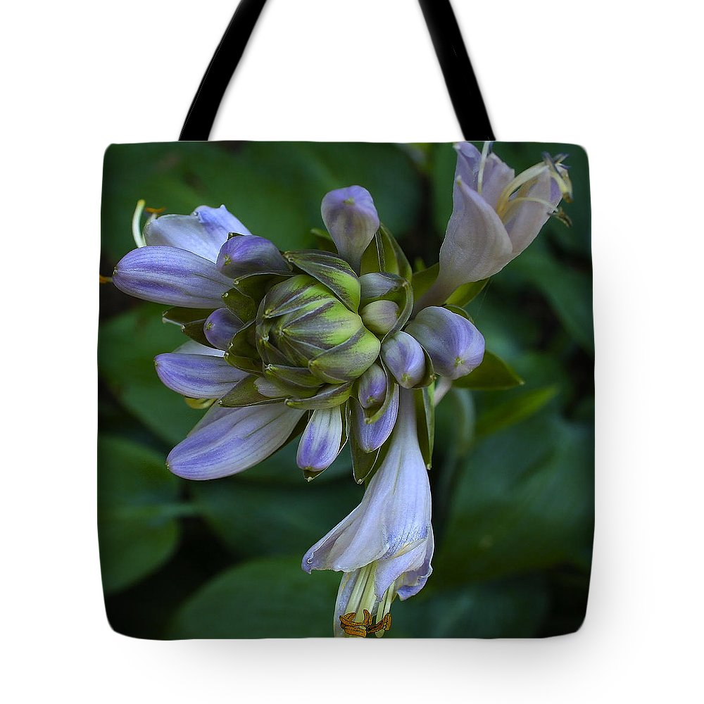 Blue Hosta Tote Bag featuring the photograph Blue Hosta by Ingrid Smith-Johnsen