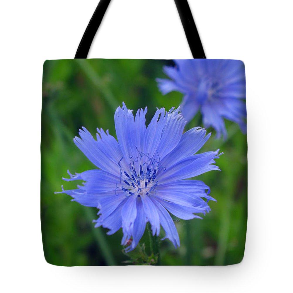 Cornflower Tote Bag featuring the photograph Blue Hue Hue by Barbara McDevitt