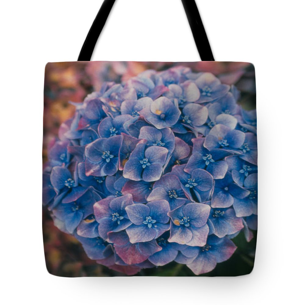 Hydrangea Tote Bag featuring the photograph Blue Hydrangea by Heather Kirk