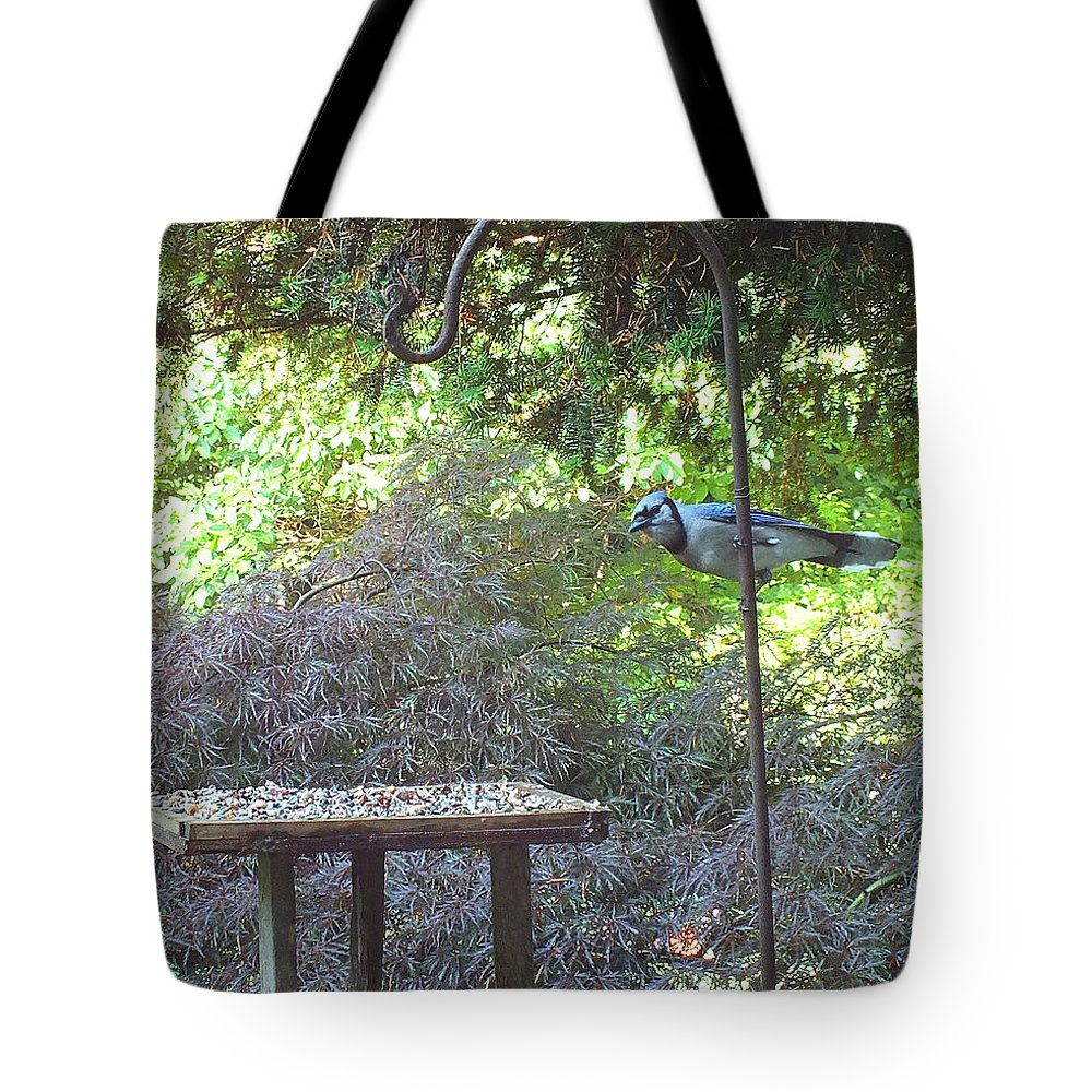 Blue Jay Tote Bag featuring the photograph Blue Jay At Lunch by Kimmary MacLean