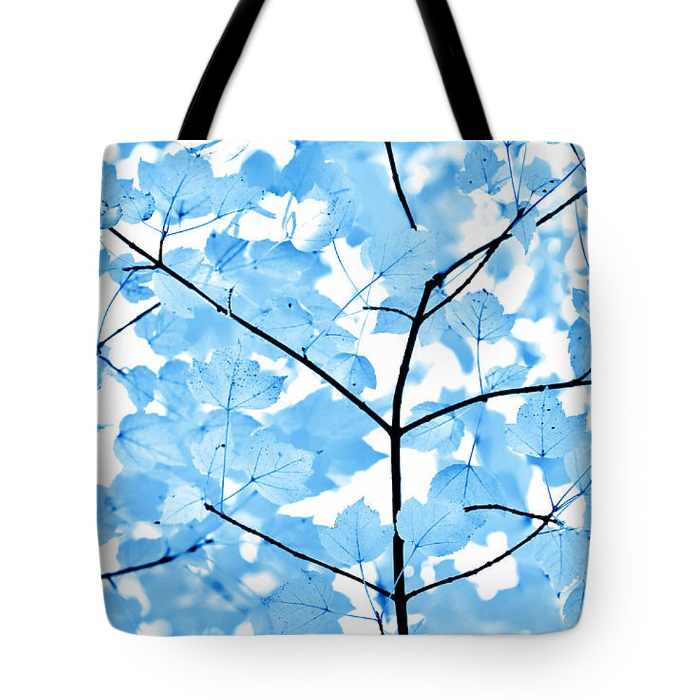 Leaf Tote Bag featuring the photograph Blue Leaves Melody by Jennie Marie Schell