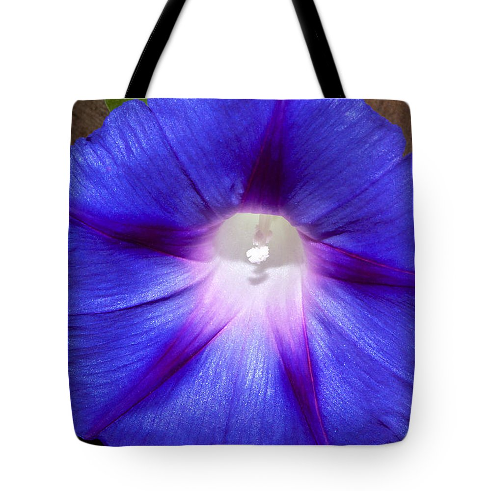 Flower Tote Bag featuring the photograph Blue Morning Glory by Phyllis Denton