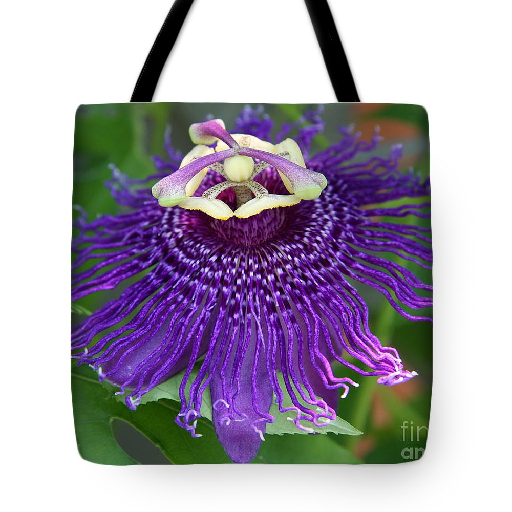Blue Passion Flower Tote Bag For Sale By Christiane Schulze Art And
