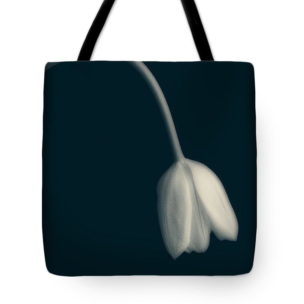 Tulip Tote Bag featuring the photograph Blue Period by Edward Fielding