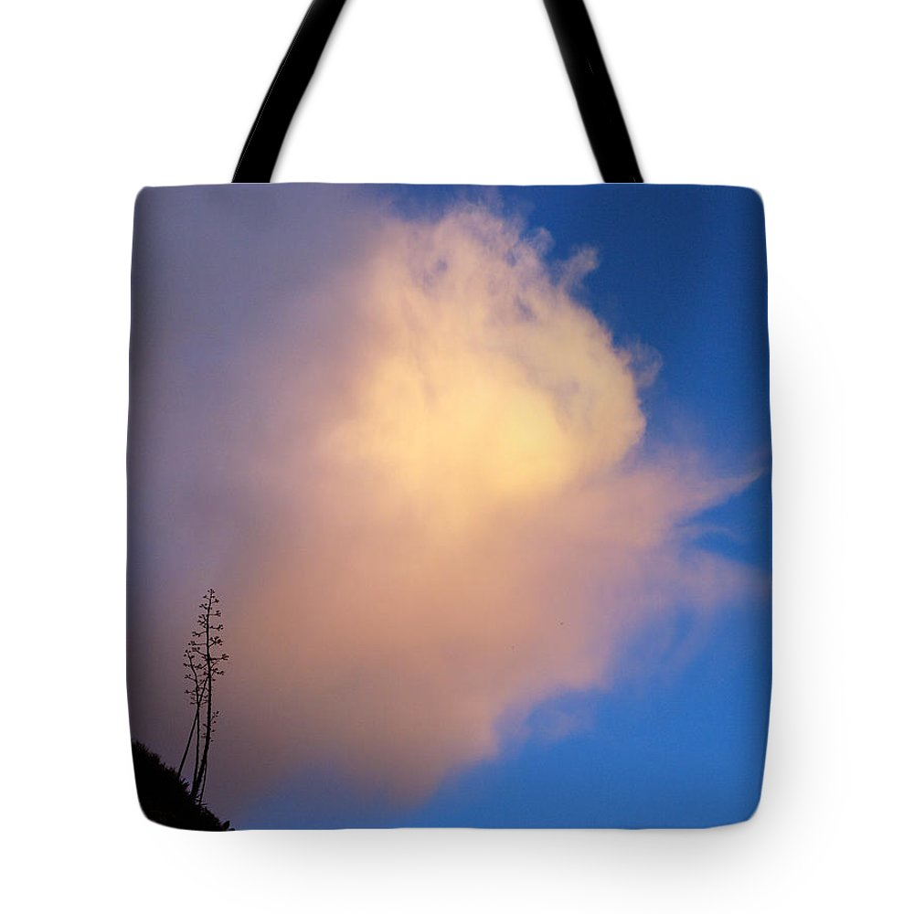 Sky Tote Bag featuring the photograph Blue Sky Sunset And Agave by Joe Schofield