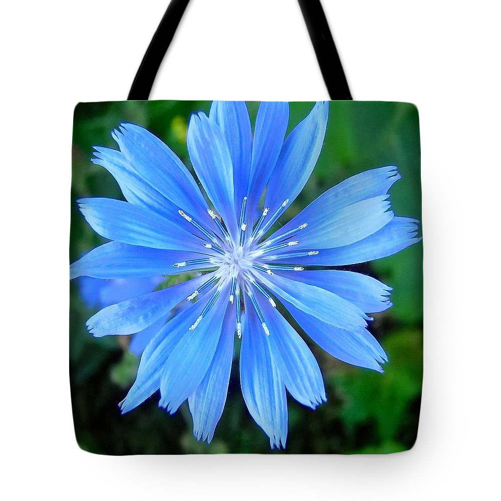 Flower Tote Bag featuring the photograph Blue Star by Stephanie Moore