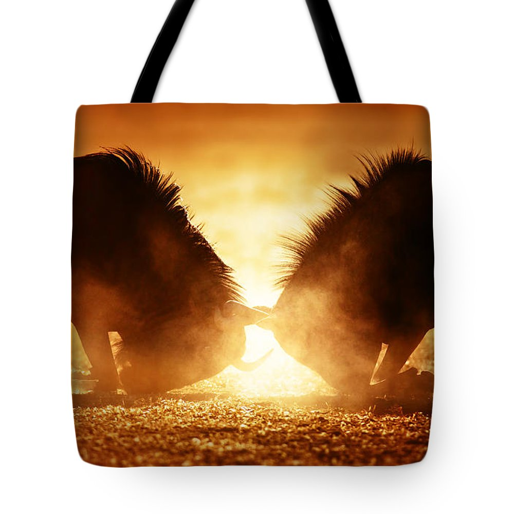Wildebeest Tote Bag featuring the photograph Blue Wildebeest Dual In Dust by Johan Swanepoel