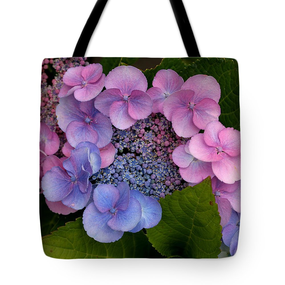 Hydrangea Tote Bag featuring the photograph Blueberries And Cream by Living Color Photography Lorraine Lynch