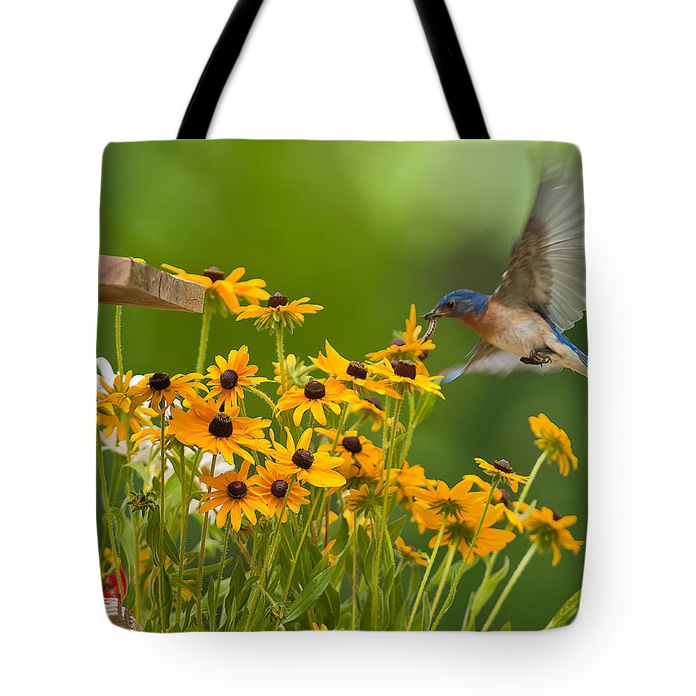 Bluebird Tote Bag featuring the photograph Bluebird Flying Over The Black Eyed Susans by Randall Branham