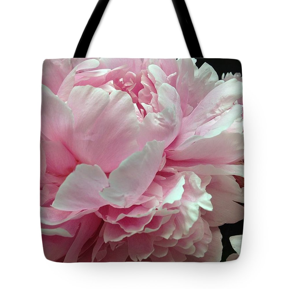 Flower Tote Bag featuring the photograph Blush Peony's by Christine Olson