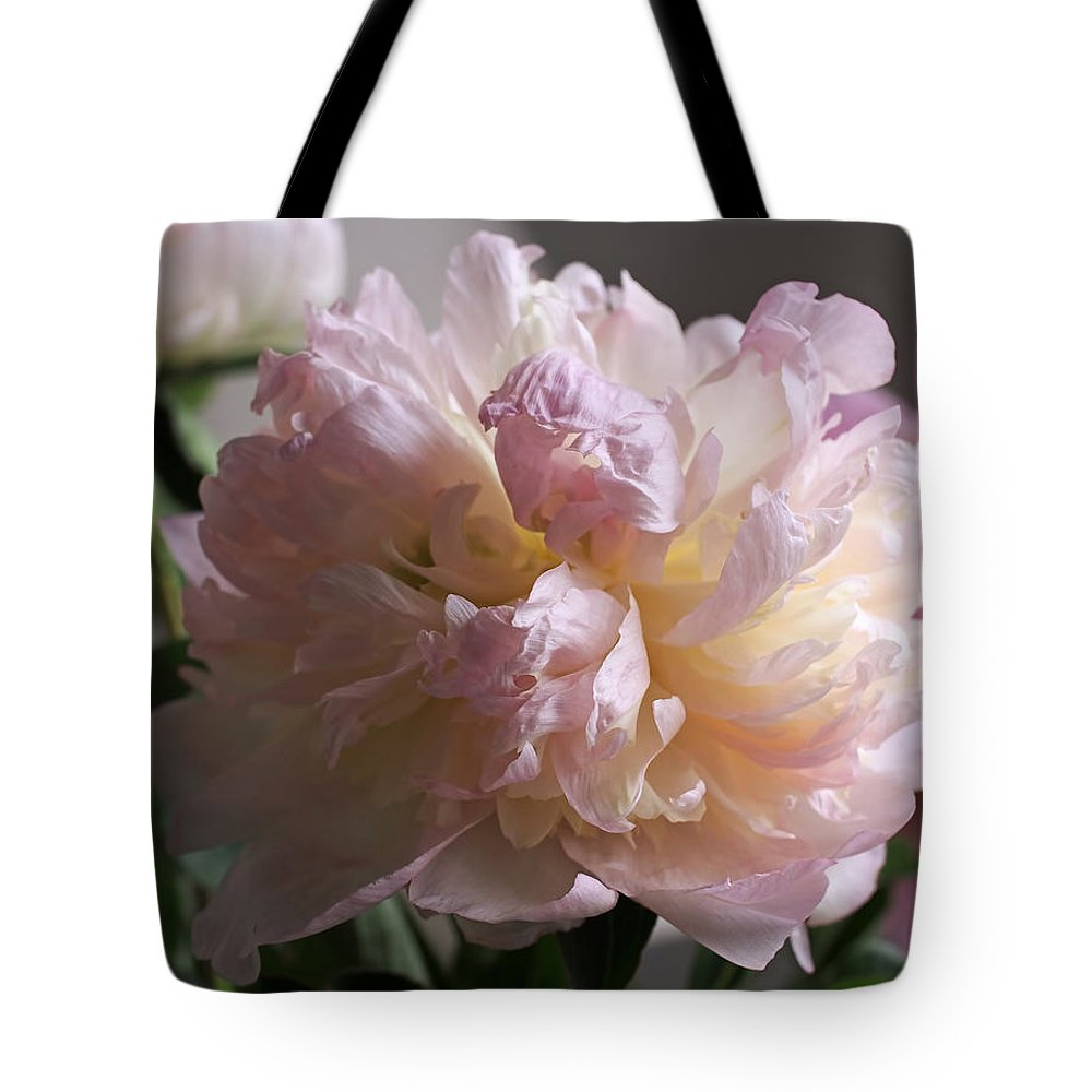 Peony Tote Bag featuring the photograph Blushing Peony by Rona Black