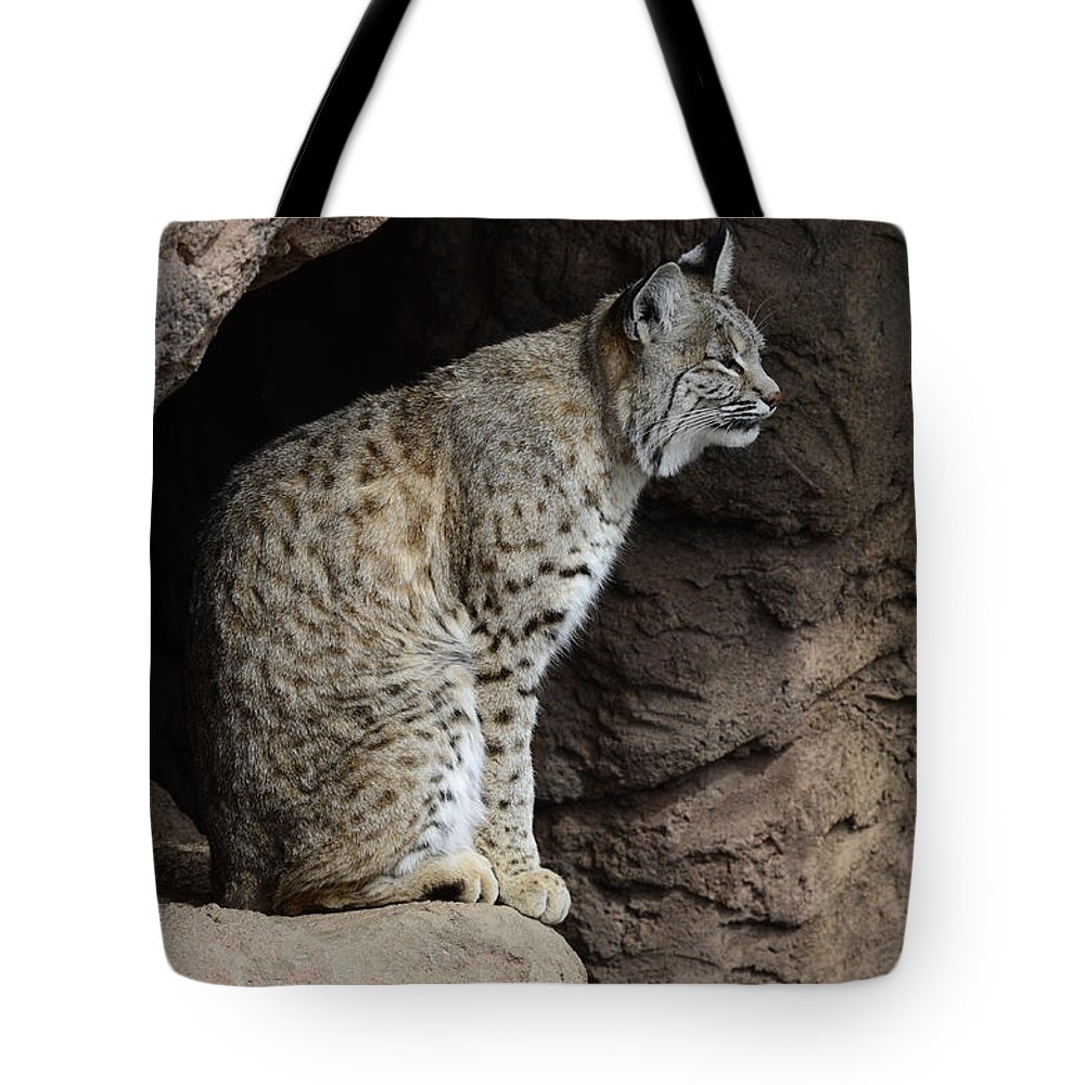 Bobcat Tote Bag featuring the photograph Bobcat by Bob Christopher