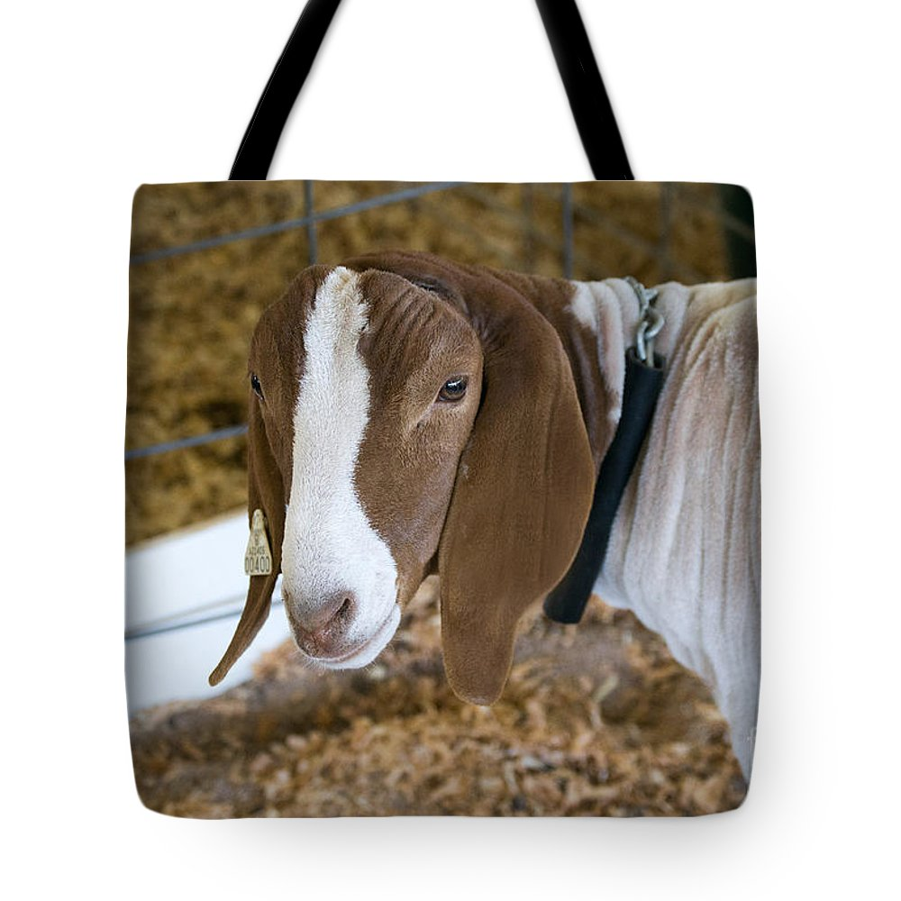 Goat Photograph Tote Bag featuring the photograph Boer Goat by Beverly Guilliams