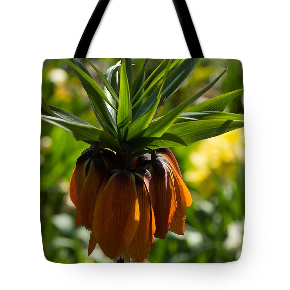 Crown Imperial Tote Bag featuring the photograph Bold And Showy Orange Crown Imperial Flower by Georgia Mizuleva