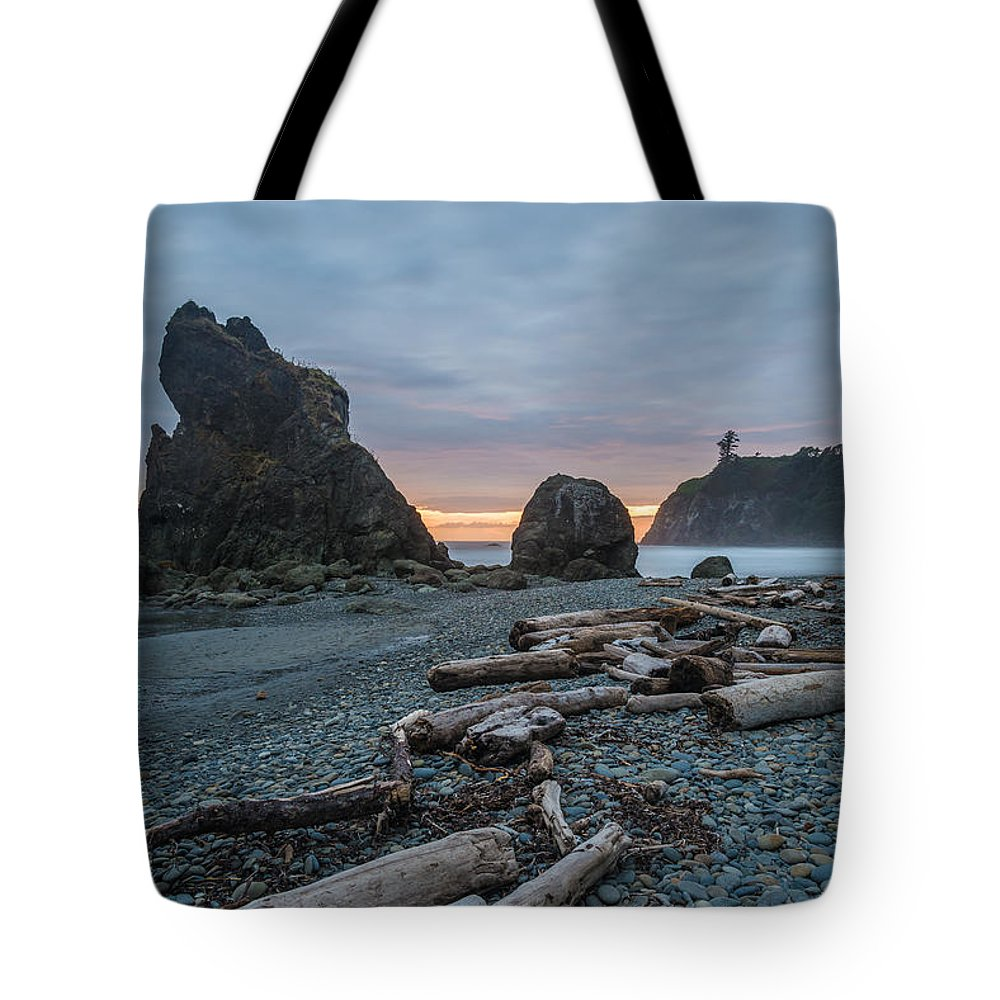 Olympic National Park Tote Bag featuring the photograph Bone Yard by Kristopher Schoenleber
