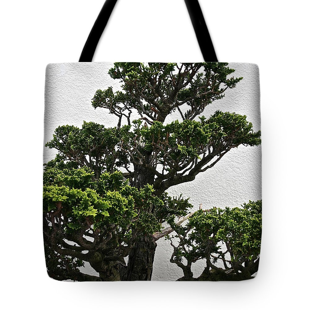 Tree Tote Bag featuring the photograph Bonsai Pine by Susan Herber